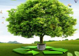 Environmental Management System Ireland